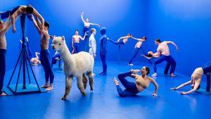 Scottish Ballet dancers in Sophie Laplanes Dive at SFDFF 2021. Photo: Andy Ross